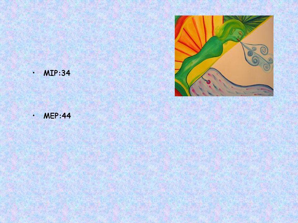MIP:34 MEP:44