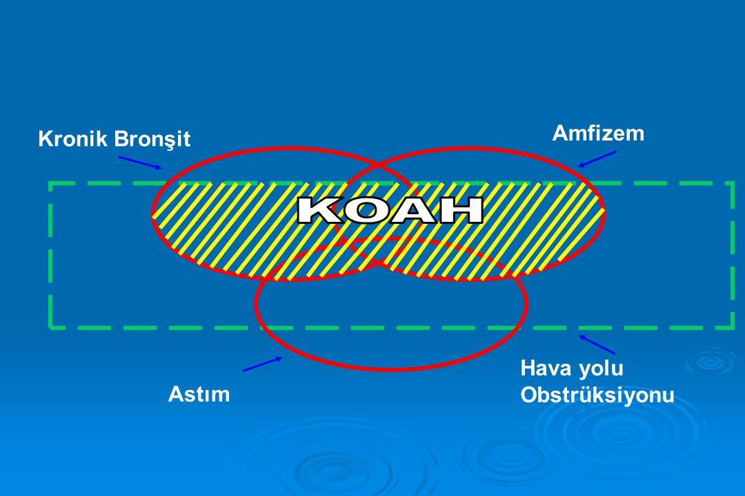 Kronik Bronşit Amfizem Astım Hava yolu Obstrüksiyonu