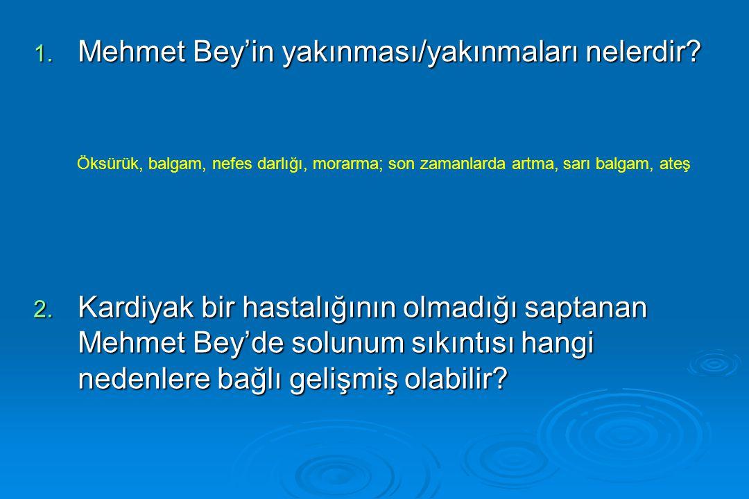 1. Mehmet Bey'in yakınması/yakınmaları nelerdir? 2. Kardiyak bir hastalığının olmadığı saptanan Mehmet Bey'de solunum sıkıntısı hangi nedenlere bağlı