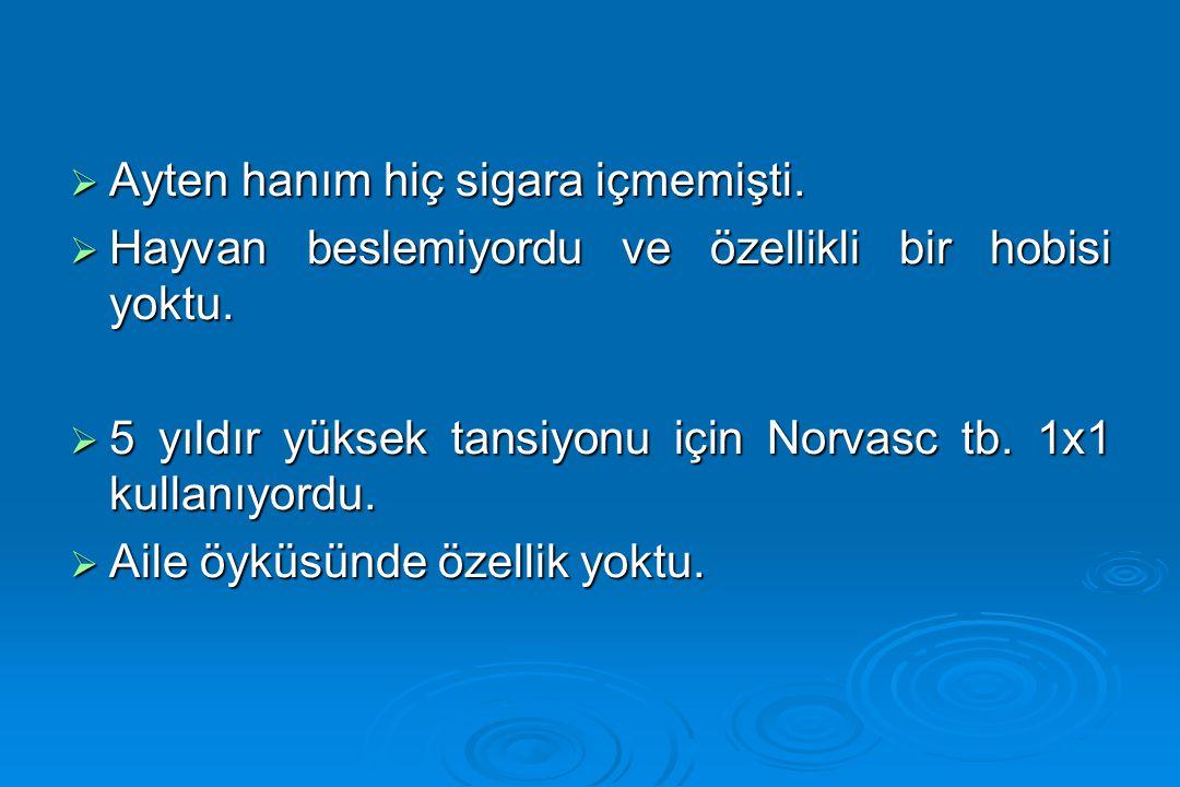 1.Mehmet Bey'in yakınması/yakınmaları nelerdir. 2.