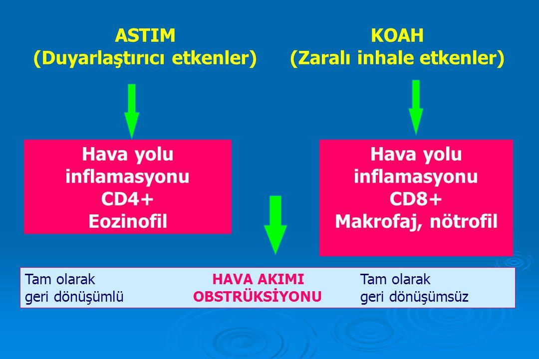 ASTIM (Duyarlaştırıcı etkenler) KOAH (Zaralı inhale etkenler) Hava yolu inflamasyonu CD4+ Eozinofil Hava yolu inflamasyonu CD8+ Makrofaj, nötrofil Tam