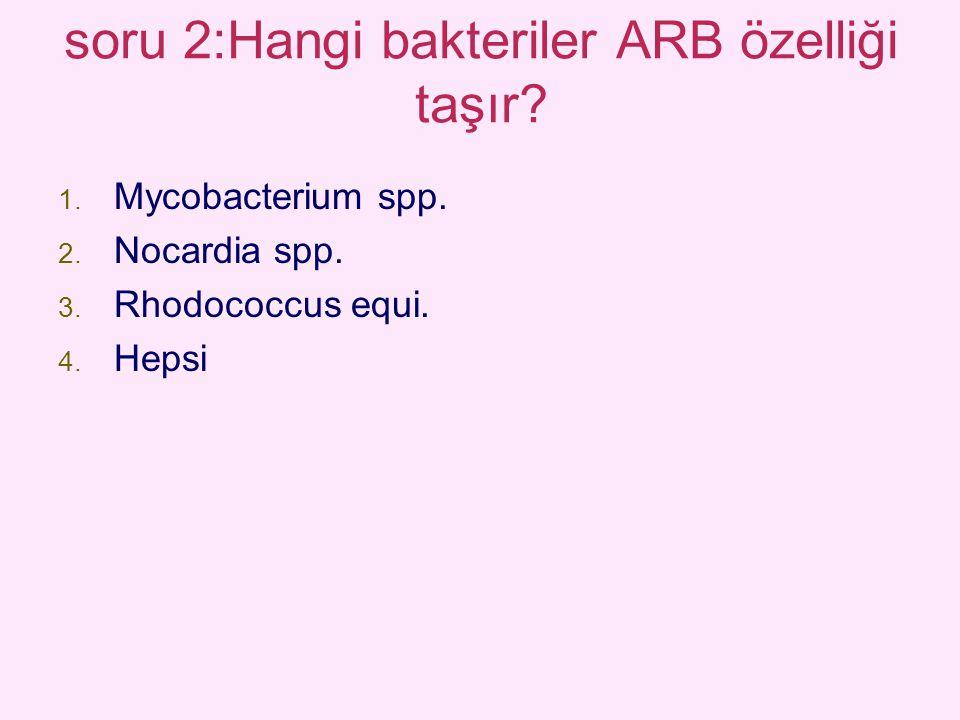 soru 2:Hangi bakteriler ARB özelliği taşır? 1. Mycobacterium spp. 2. Nocardia spp. 3. Rhodococcus equi. 4. Hepsi