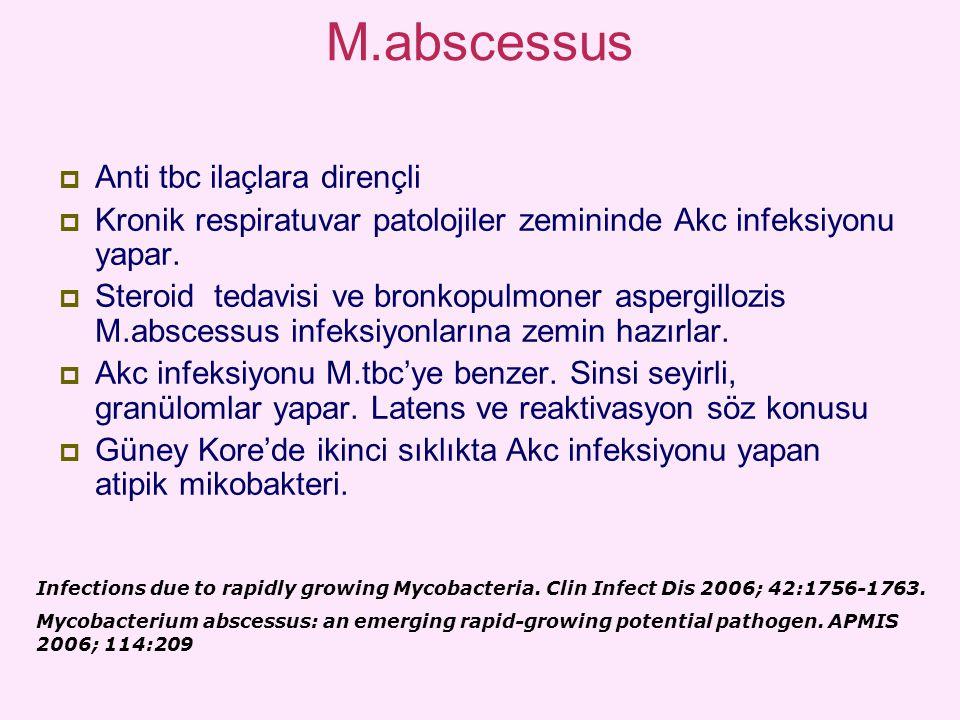 M.abscessus  Anti tbc ilaçlara dirençli  Kronik respiratuvar patolojiler zemininde Akc infeksiyonu yapar.