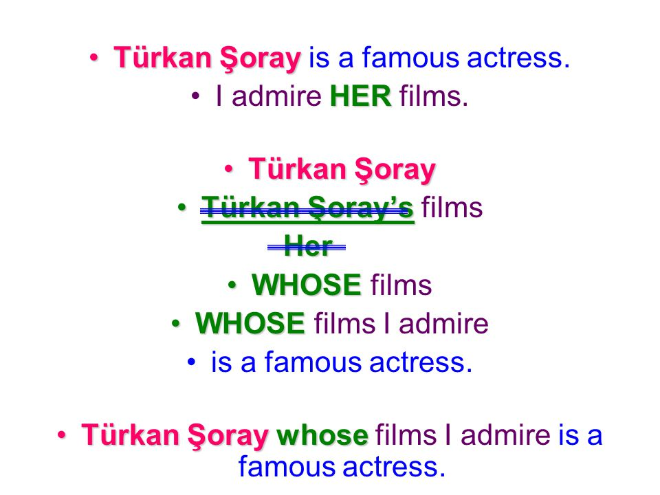 Türkan Şoray is a famous actress.I admire H HH HER films.