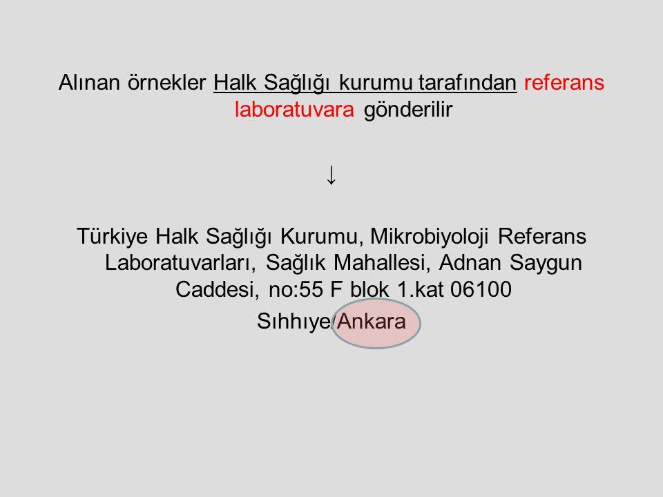Alınan örnekler Halk Sağlığı kurumu tarafından referans laboratuvara gönderilir ↓ Türkiye Halk Sağlığı Kurumu, Mikrobiyoloji Referans Laboratuvarları,