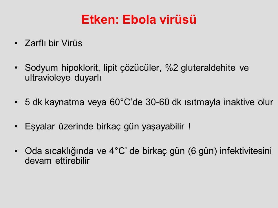 Etken: Ebola virüsü Zarflı bir Virüs Sodyum hipoklorit, lipit çözücüler, %2 gluteraldehite ve ultravioleye duyarlı 5 dk kaynatma veya 60°C'de 30-60 dk