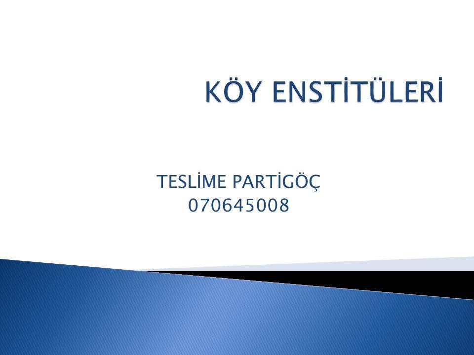 TESLİME PARTİGÖÇ 070645008
