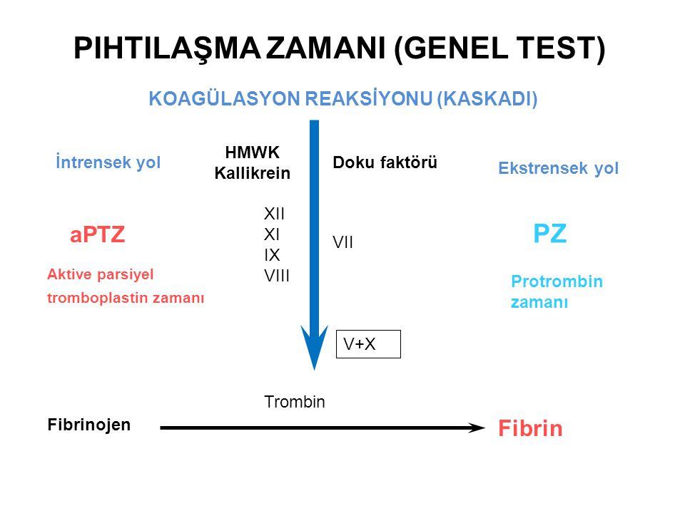 KOAGÜLASYON REAKSİYONU (KASKADI) HMWK Kallikrein XII XI IX VIII VII aPTZ PZ V+X İntrensek yol Ekstrensek yol Doku faktörü Trombin Fibrinojen Fibrin Ak