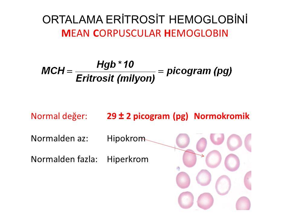 ORTALAMA ERİTROSİT HEMOGLOBİNİ MEAN CORPUSCULAR HEMOGLOBIN Normal değer: 29 ± 2 picogram (pg)Normokromik Normalden az: Hipokrom Normalden fazla: Hiper