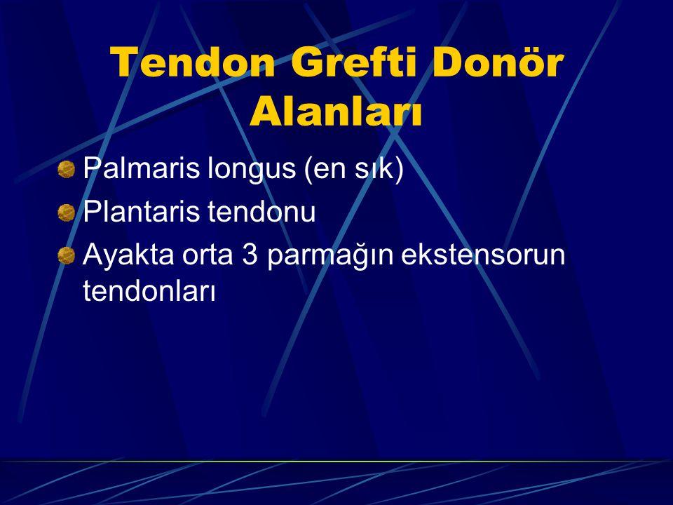 Tendon Grefti Donör Alanları Palmaris longus (en sık) Plantaris tendonu Ayakta orta 3 parmağın ekstensorun tendonları