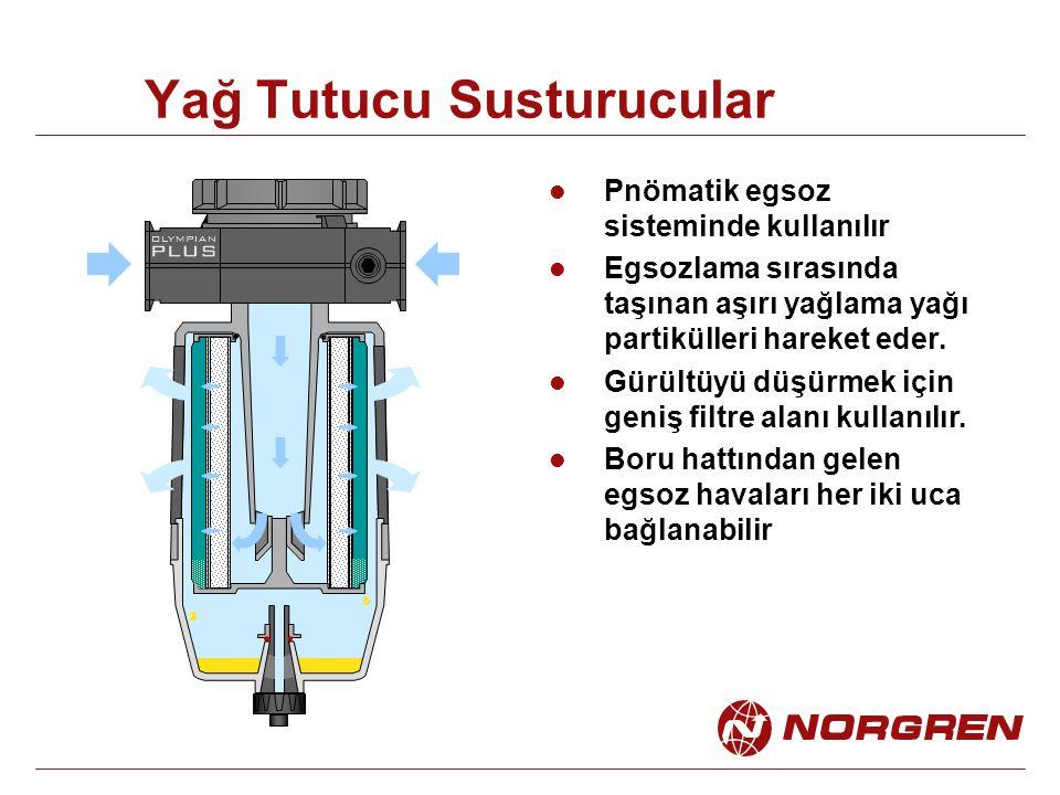 Yağ Tutucu Susturucular Pnömatik egsoz sisteminde kullanılır Egsozlama sırasında taşınan aşırı yağlama yağı partikülleri hareket eder. Gürültüyü düşür