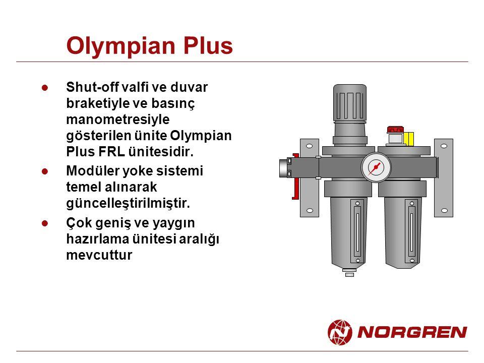 Olympian Plus Shut-off valfi ve duvar braketiyle ve basınç manometresiyle gösterilen ünite Olympian Plus FRL ünitesidir. Modüler yoke sistemi temel al