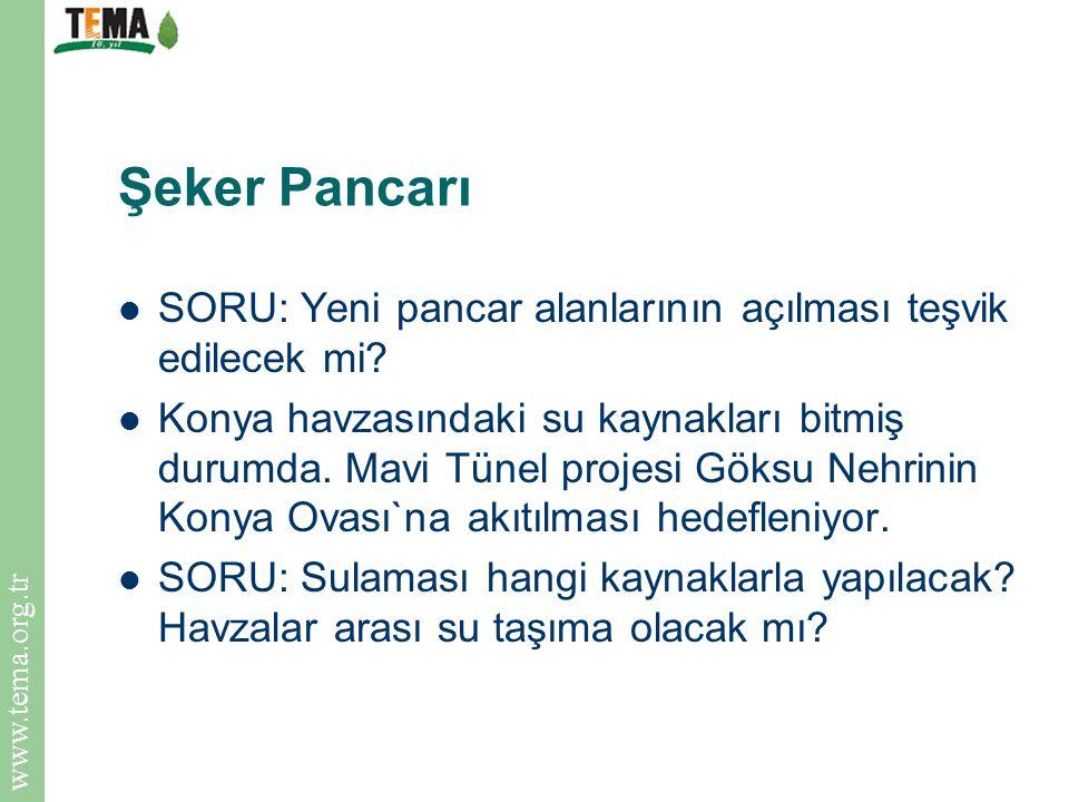 www.tema.org.tr Şeker Pancarı SORU: Yeni pancar alanlarının açılması teşvik edilecek mi? Konya havzasındaki su kaynakları bitmiş durumda. Mavi Tünel p