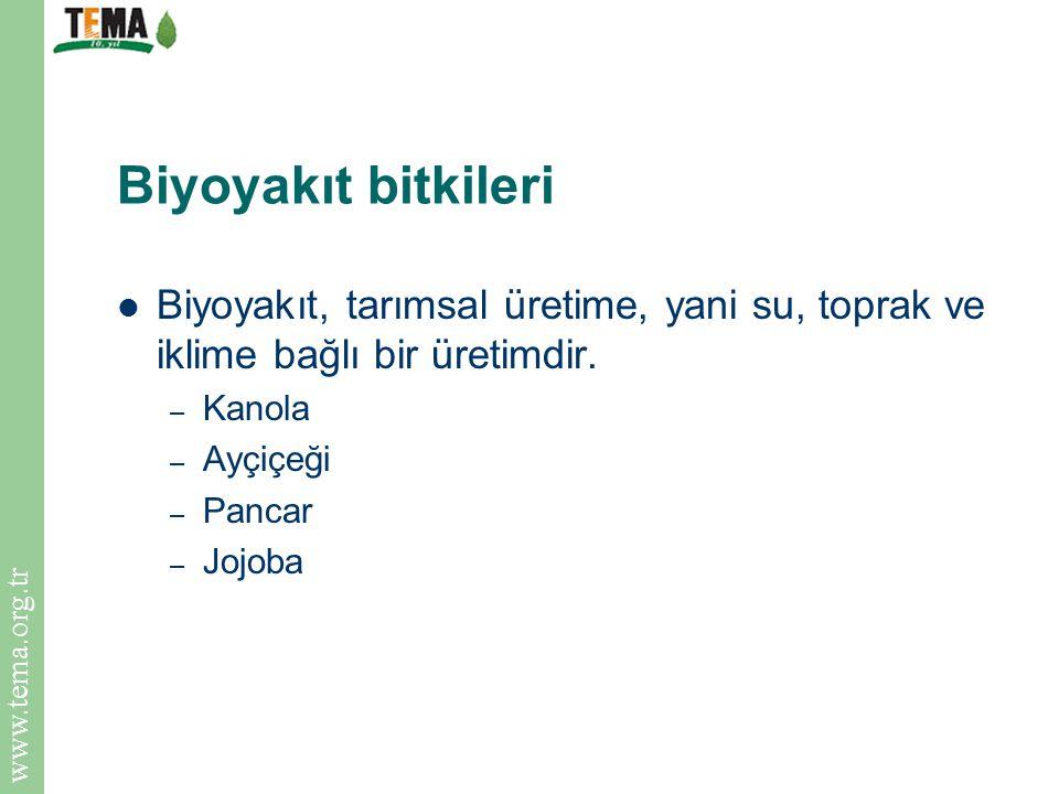 www.tema.org.tr Biyoyakıt bitkileri Biyoyakıt, tarımsal üretime, yani su, toprak ve iklime bağlı bir üretimdir. – Kanola – Ayçiçeği – Pancar – Jojoba