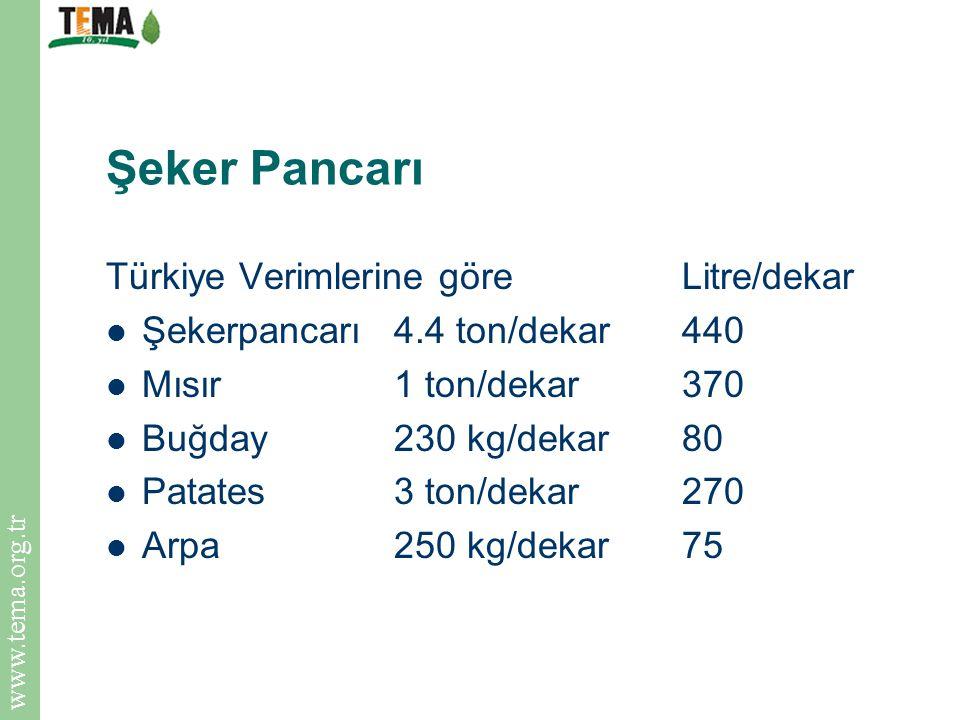 www.tema.org.tr Şeker Pancarı İç ve Doğu Anadolu'da 3 yılda bir ekim yapılıyor, Türkiye'de büyük üretim, 80'lerden sonra artış, Toprağı yorucu, Yüksek su kullanımı, akiferlere baskı, taban suyunun çekilmesi, sulak alanların kurutulması ve kuruması, Yüksek maliyet, devlet desteği ile ayakta duruyor.