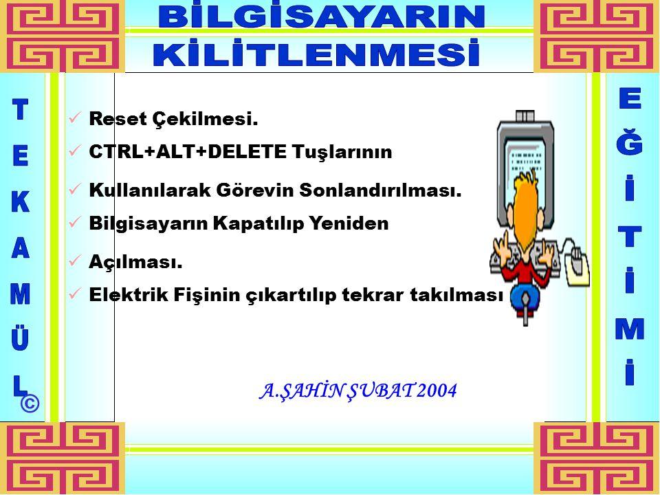 A.ŞAHİN ŞUBAT 2004 Reset Çekilmesi.