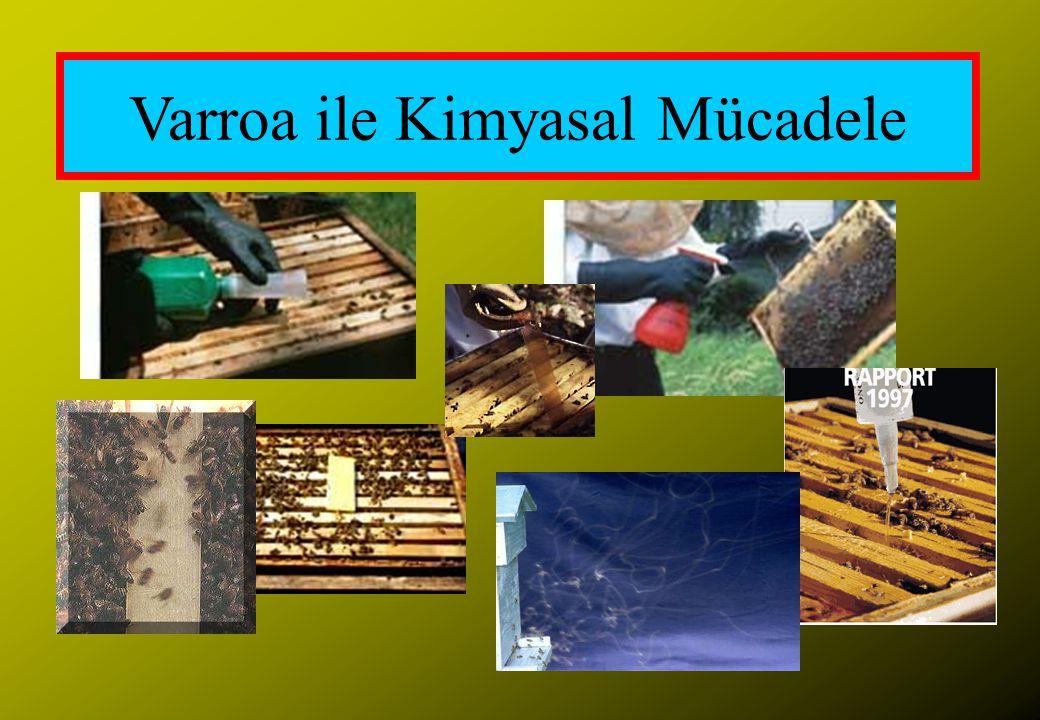 Varroa ile Kimyasal Mücadele