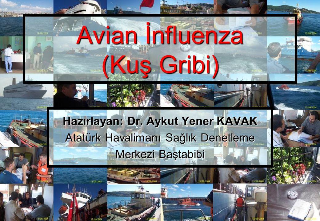 Avian İnfluenza (Kuş Gribi) Hazırlayan: Dr. Aykut Yener KAVAK Atatürk Havalimanı Sağlık Denetleme Merkezi Baştabibi