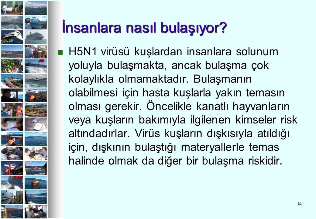 55 İnsanlara nasıl bulaşıyor? H5N1 virüsü kuşlardan insanlara solunum yoluyla bulaşmakta, ancak bulaşma çok kolaylıkla olmamaktadır. Bulaşmanın olabil