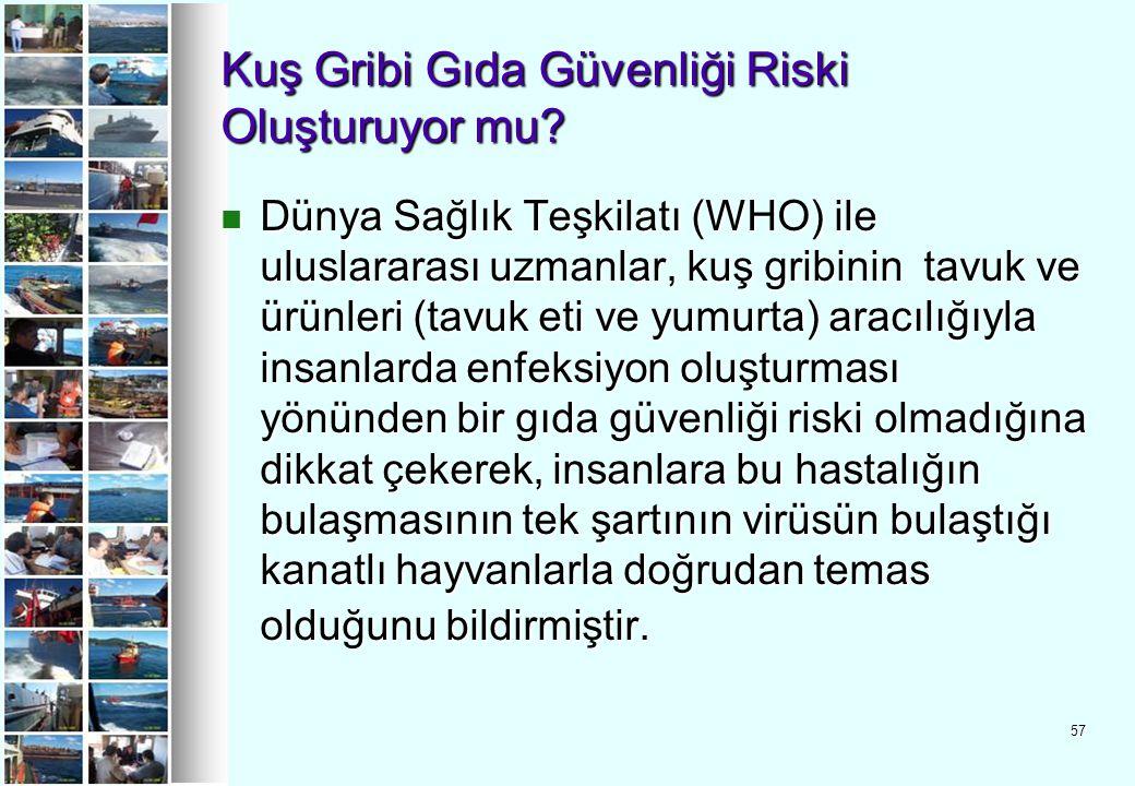 57 Kuş Gribi Gıda Güvenliği Riski Oluşturuyor mu? Dünya Sağlık Teşkilatı (WHO) ile uluslararası uzmanlar, kuş gribinin tavuk ve ürünleri (tavuk eti ve
