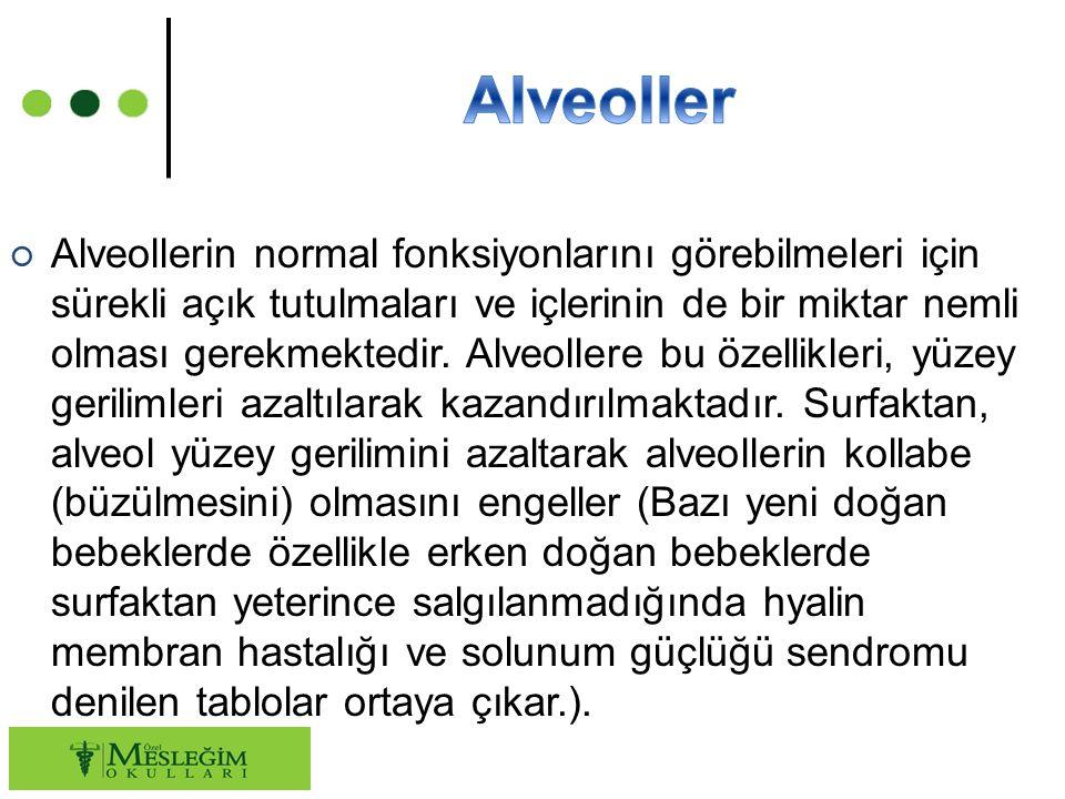 ○ Alveollerin normal fonksiyonlarını görebilmeleri için sürekli açık tutulmaları ve içlerinin de bir miktar nemli olması gerekmektedir. Alveollere bu