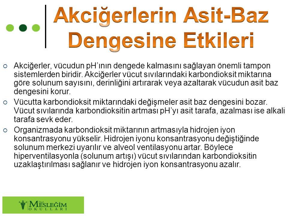 ○ Extrasellüler sıvılardaki karbondioksit konsantrasyonu düştüğünde ise solunum merkezi baskılanır ve alveol ventilasyonu azalır.