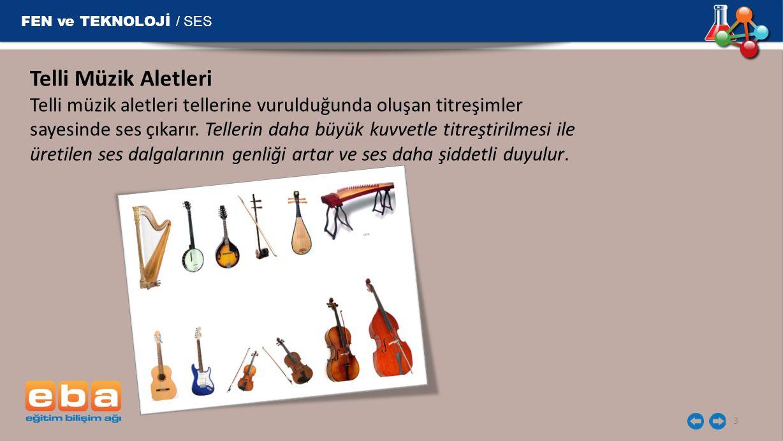 FEN ve TEKNOLOJİ / SES 3 Telli Müzik Aletleri Telli müzik aletleri tellerine vurulduğunda oluşan titreşimler sayesinde ses çıkarır. Tellerin daha büyü