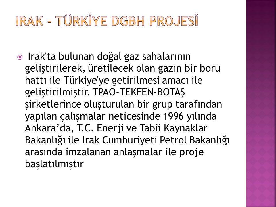  Irak'ta bulunan doğal gaz sahalarının geliştirilerek, üretilecek olan gazın bir boru hattı ile Türkiye'ye getirilmesi amacı ile geliştirilmiştir. TP