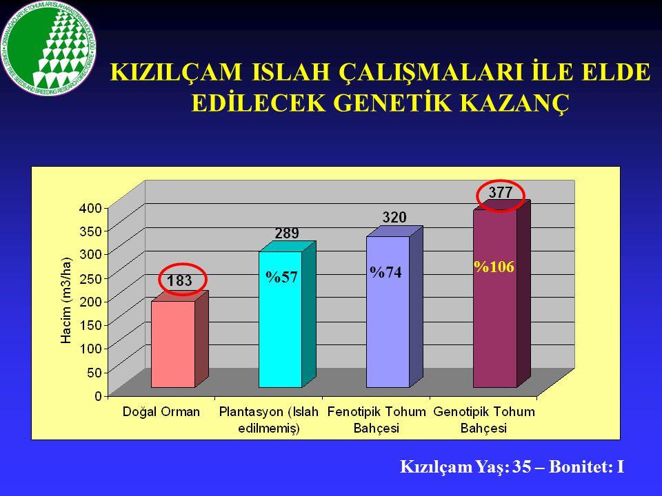 KIZILÇAM ISLAH ÇALIŞMALARI İLE ELDE EDİLECEK GENETİK KAZANÇ %57 %74 %106 Kızılçam Yaş: 35 – Bonitet: I