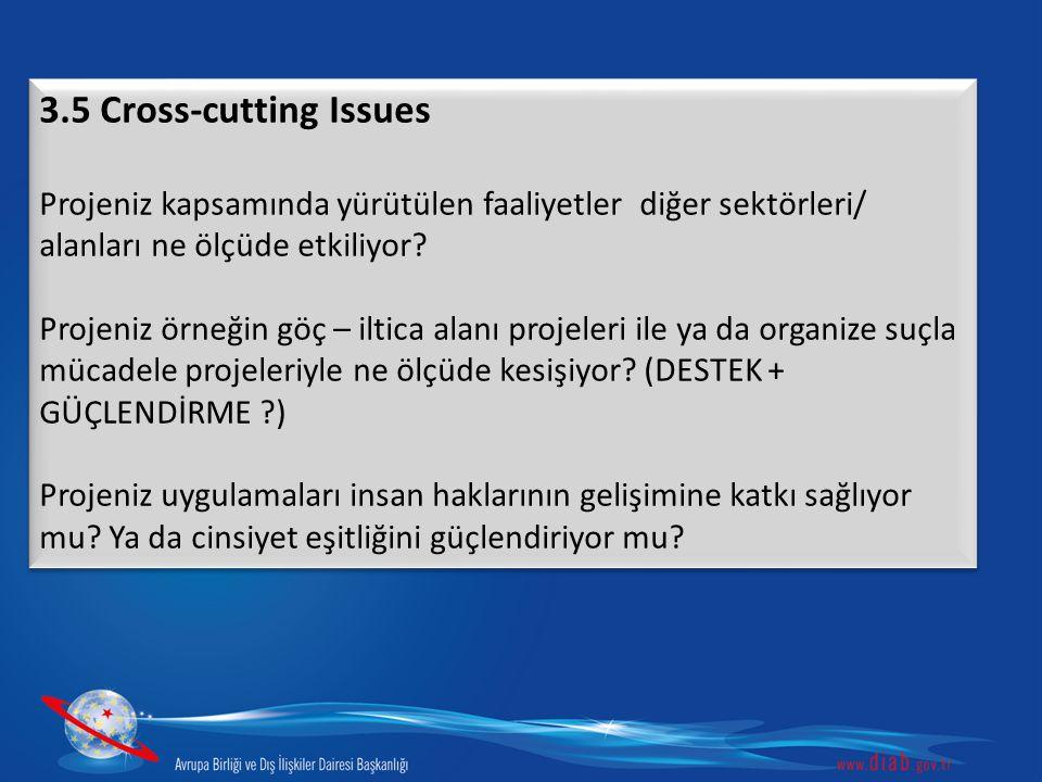 3.5 Cross-cutting Issues Projeniz kapsamında yürütülen faaliyetler diğer sektörleri/ alanları ne ölçüde etkiliyor? Projeniz örneğin göç – iltica alanı