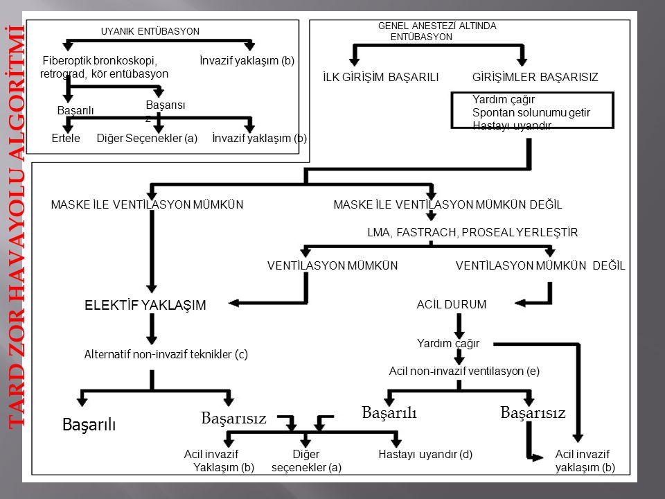 UYANIK ENTÜBASYON Fiberoptik bronkoskopi, retrograd, kör entübasyon İnvazif yaklaşım (b) Başarılı Başarısı z Ertele Diğer Seçenekler (a)İnvazif yaklaşım (b) GENEL ANESTEZİ ALTINDA ENTÜBASYON İLK GİRİŞİM BAŞARILIGİRİŞİMLER BAŞARISIZ Yardım çağır Spontan solunumu getir Hastayı uyandır MASKE İLE VENTİLASYON MÜMKÜNMASKE İLE VENTİLASYON MÜMKÜN DEĞİL LMA, FASTRACH, PROSEAL YERLEŞTİR VENTİLASYON MÜMKÜNVENTİLASYON MÜMKÜN DEĞİL ACİL DURUM Yardım çağır Acil non-invazif ventilasyon (e) ELEKTİF YAKLAŞIM Alternatif non-invazif teknikler (c) Başarılı Başarısız BaşarılıBaşarısız Acil invazif yaklaşım (b) Acil invazif Diğer Yaklaşım (b) seçenekler (a) Hastayı uyandır (d) TARD ZOR HAVAYOLU ALGORİTMİ