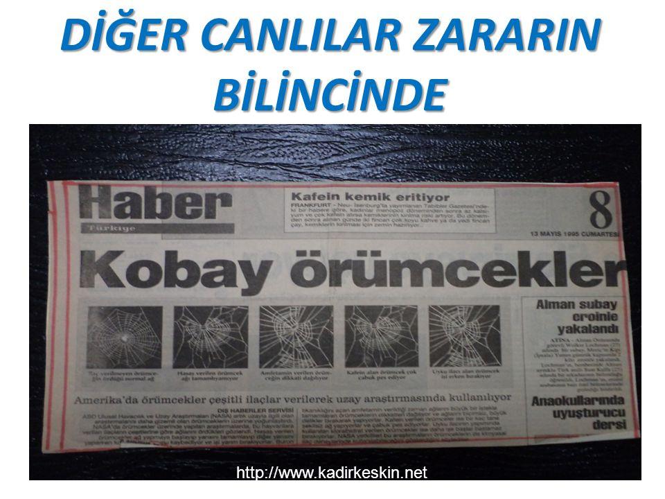 DİĞER CANLILAR ZARARIN BİLİNCİNDE http://www.kadirkeskin.net