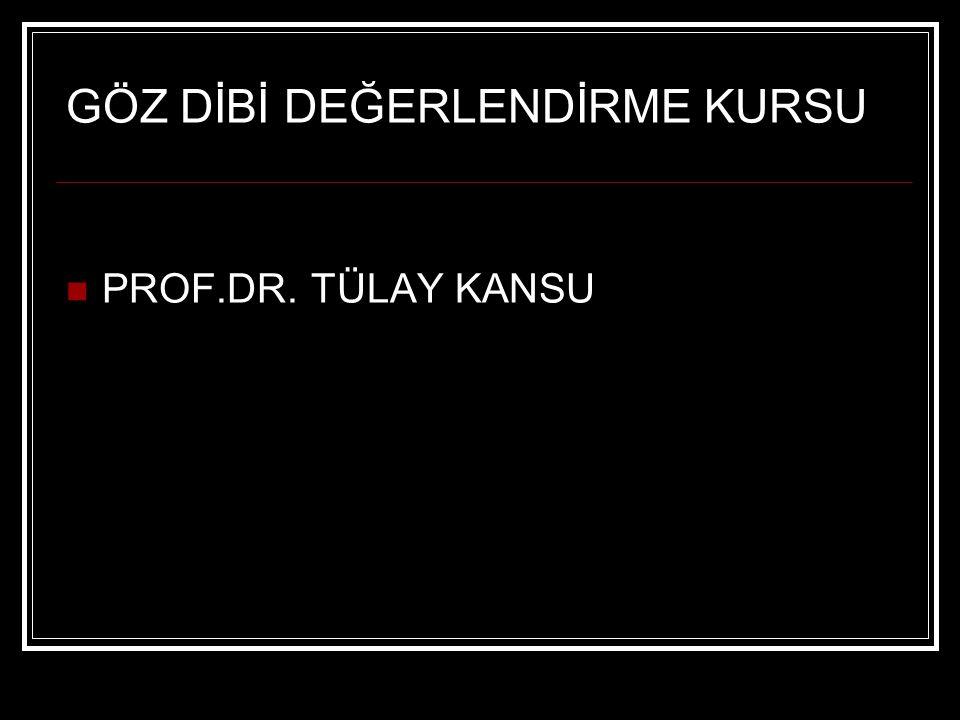 GÖZ DİBİ DEĞERLENDİRME KURSU PROF.DR. TÜLAY KANSU