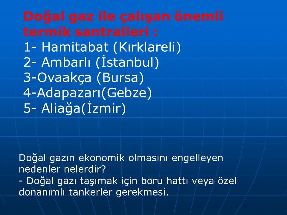 Doğal gaz ile çalışan önemli termik santralleri : 1- Hamitabat (Kırklareli) 2- Ambarlı (İstanbul) 3-Ovaakça (Bursa) 4-Adapazarı(Gebze) 5- Aliağa(İzmir