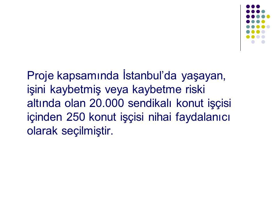 Proje kapsamında İstanbul'da yaşayan, işini kaybetmiş veya kaybetme riski altında olan 20.000 sendikalı konut işçisi içinden 250 konut işçisi nihai faydalanıcı olarak seçilmiştir.