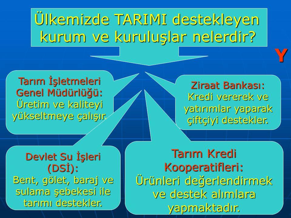 Ülkemizde TARIMI destekleyen kurum ve kuruluşlar nelerdir.