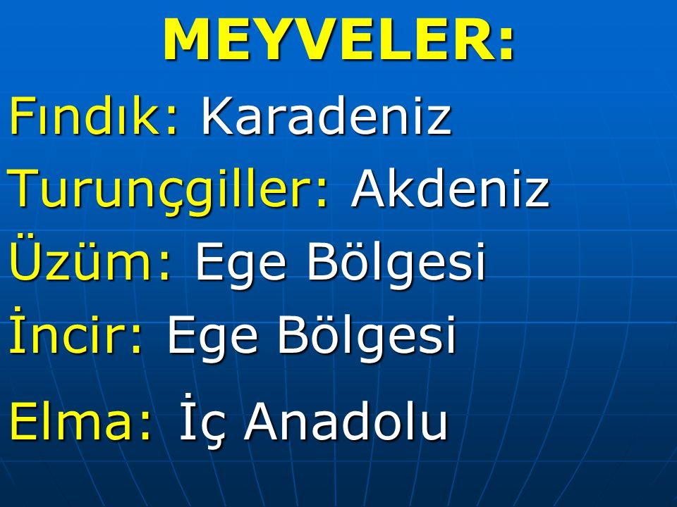 MEYVELER: Fındık: Karadeniz Turunçgiller: Akdeniz Üzüm: Ege Bölgesi İncir: Ege Bölgesi Elma: İç Anadolu