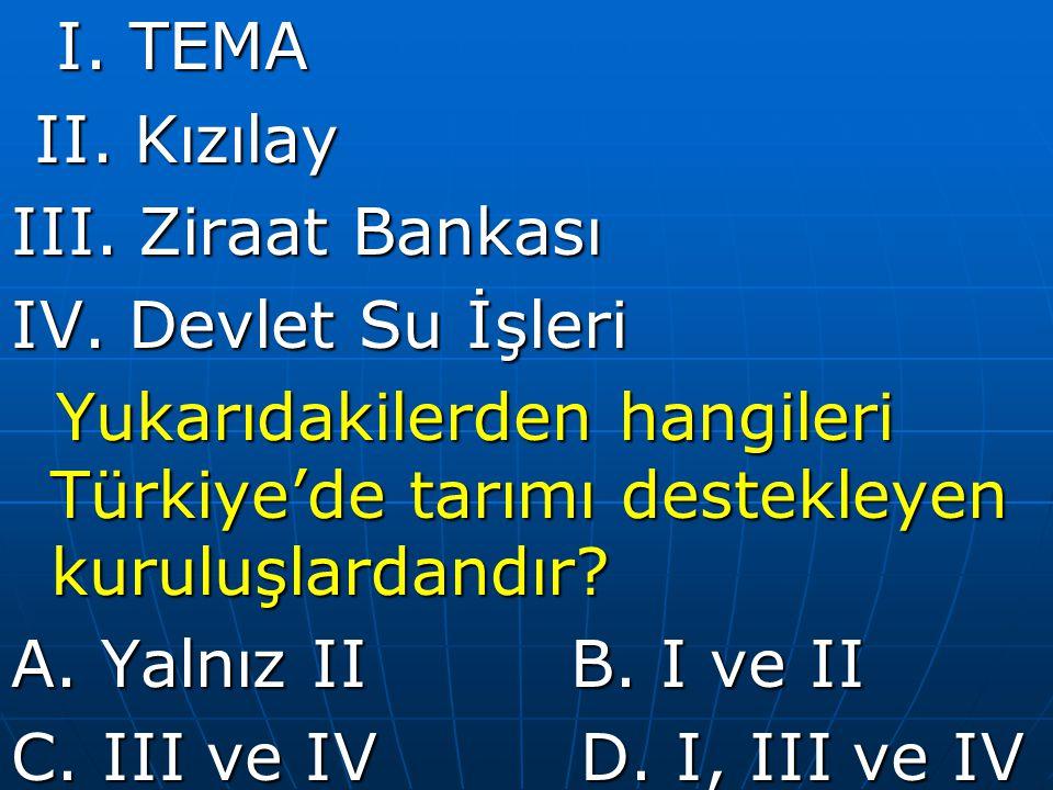 I.TEMA I. TEMA II. Kızılay II. Kızılay III. Ziraat Bankası IV.