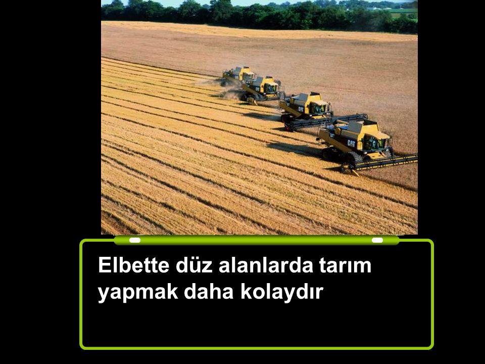 Hangi alan tarım yapmaya daha uygundur ? Düz Alan Engebeli alan