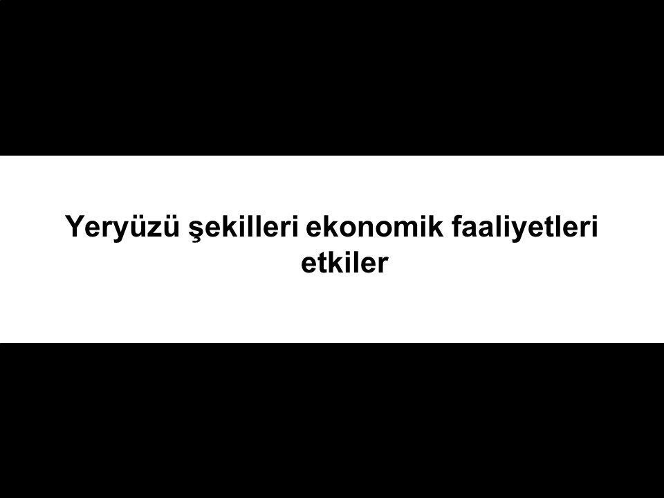 Türkiye'nin coğrafi yapısını düşündüğümüzde hangi bölgelerde tarım yapmak daha kolaydır ?