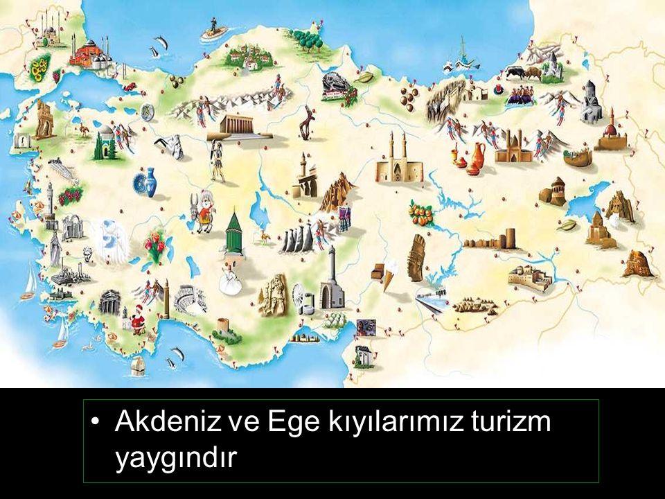 Türkiye üç tarafı denizle çevrili yarımada olduğuna göre kıyılarda hangi ekonomik faaliyetler yapılabilir?