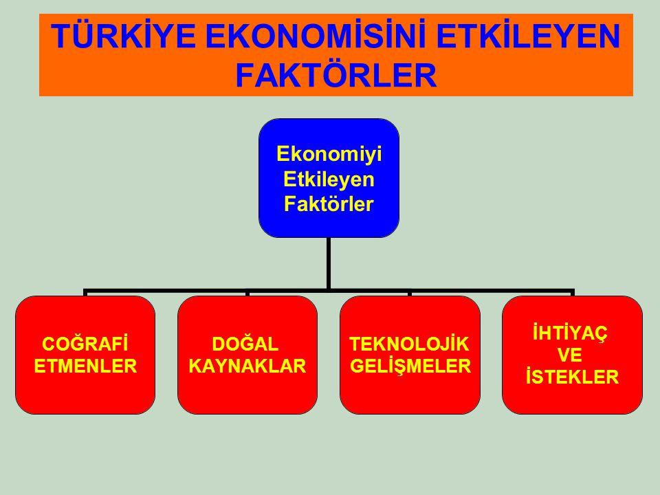 Ve sonuncusu: Ekonomik faaliyetleri etkileyen temel unsurlar nelerdir?