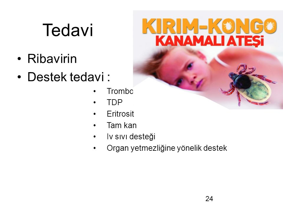 24 Tedavi Ribavirin Destek tedavi : Trombosit TDP Eritrosit Tam kan Iv sıvı desteği Organ yetmezliğine yönelik destek