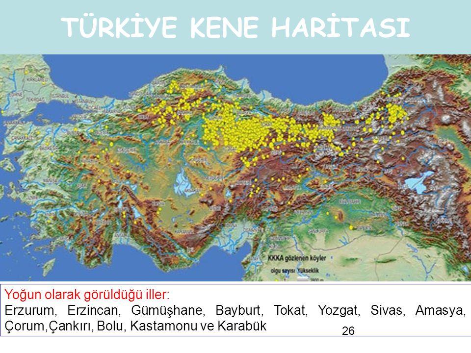 26 TÜRKİYE KENE HARİTASI Yoğun olarak görüldüğü iller: Erzurum, Erzincan, Gümüşhane, Bayburt, Tokat, Yozgat, Sivas, Amasya, Çorum,Çankırı, Bolu, Kasta