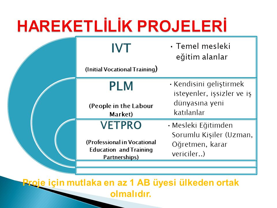 IVT (Initial Vocational Training ) PLM (People in the Labour Market) VETPRO (Professional in Vocational Education and Training Partnerships) Temel mes