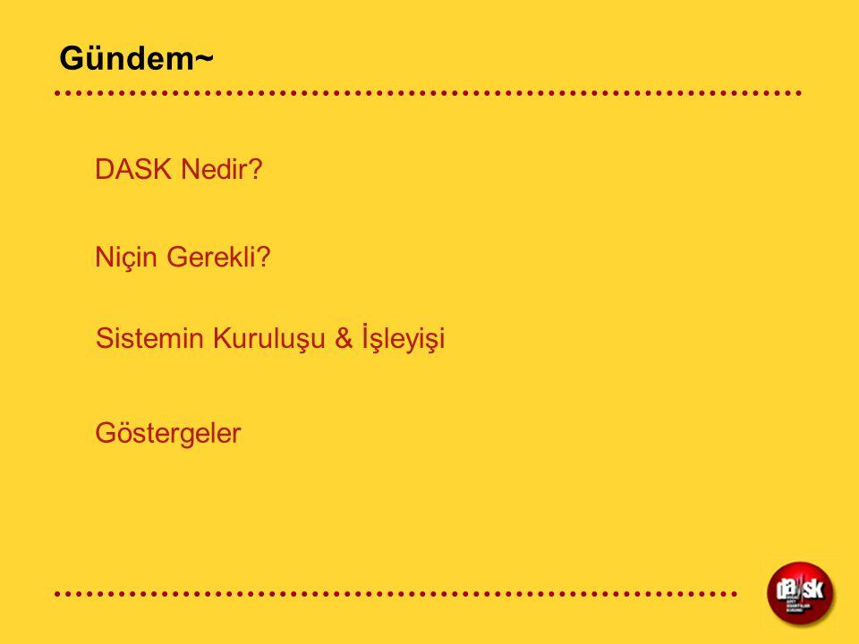 Genel Olarak... ZDS teminatı DASK tarafından sunulmaktadır.