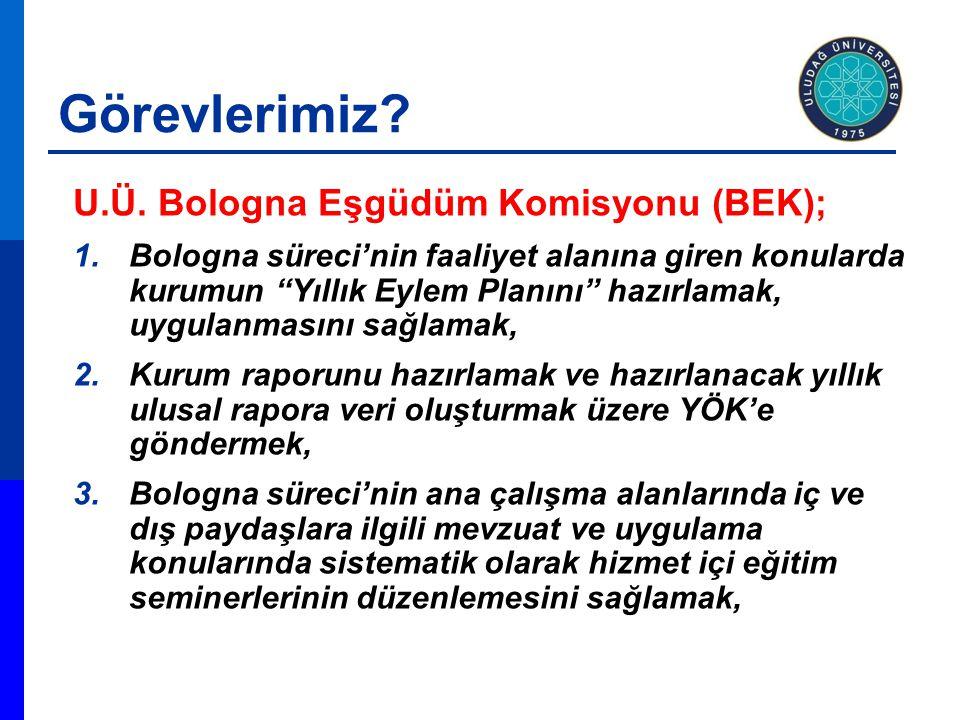 Ulusal Yeterlilikler Çerçevesi Türkiye'de Neler Yapıldı.