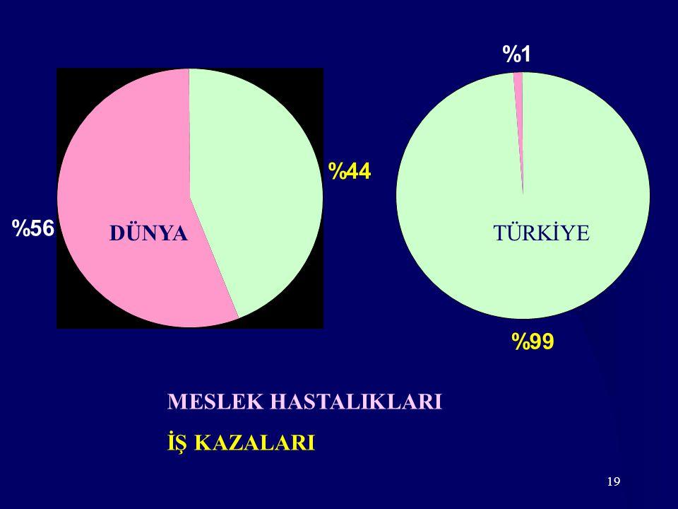 19 %44 %56 DÜNYA %99 %1 TÜRKİYE MESLEK HASTALIKLARI İŞ KAZALARI