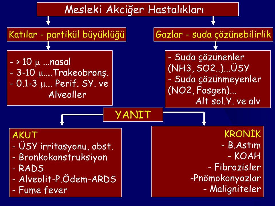 3 Mesleki Akciğer Hastalıkları Katılar - partikül büyüklüğüGazlar - suda çözünebilirlik - > 10 ...nasal - 3-10 ....Trakeobronş. - 0.1-3 ... Perif.