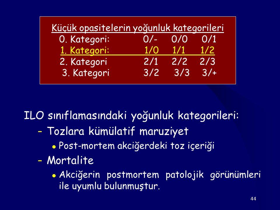 44 Küçük opasitelerin yoğunluk kategorileri 0. Kategori: 0/- 0/0 0/1 1. Kategori:1/01/11/2 2. Kategori2/12/22/3 3. Kategori 3/2 3/3 3/+ ILO sınıflamas